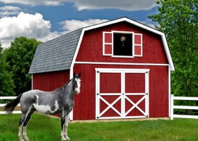 Best Barns Roanoke 16 x 24 Wood Building