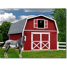 Best Barns Roanoke 16 x 28 Wood Building